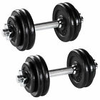 Dumbbells Set Weights Training Exercise Fitness Cast Iron Biceps Gym Workout