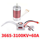 SURPASS HOBBY Platinum Waterproof 3665 Sensorless Brushless Motor  60A ESC