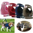 Small Dog Cat Breathable Mesh Harness Vest Collar Chest Strap Leash  Size XS-XL