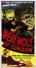 Vintage Old Movie Poster Werewolf Of London 1935 04 Print Art Canvas A4 A3 A2 A1