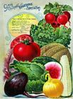 Alneer Back 2 Vintage Seed Cover Picture Art Print Canvas Poster A4 A3 A2 A1