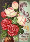 Childs 3 Vintage Seed Cover Picture Art Print Canvas Poster A4 A3 A2 A1