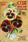 Cox Vintage Seed Cover Picture Art Print Canvas Poster A4 A3 A2 A1