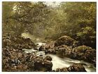 Ireland In The Dargle County Wicklow Art Print A4 A3 A2 A1
