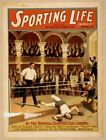 Vintage Sporting Life Poster CIRCUS0605 Art Print A4 A3 A2 A1