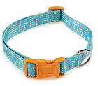 Blooming Brights Dog Collar Nylon Flowers Pet Collars East Side Collection