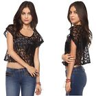Victoria 5 Pack Lace Floral Crop-Top with Front Pocket in 4 Sizes