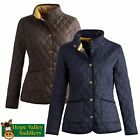 Joules Oakwood Ladies Quilted Jacket (P) ***BRAND NEW***
