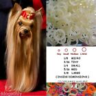 Show Dog Latex Hair Rubber Bands: TopKnot/Grooming/Bows Natural Colored