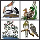Birds With scene Collection-ll  Embroidered Iron On Patches