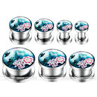 "Pair 6g-9/16"" Blue Peony Flower Stainless Steel Ear Tunnel Plugs Earlets Punk"