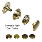 Line 24 Snaps - Solid Brass Nickel Plated 4 Cap Colors - 10 Pack