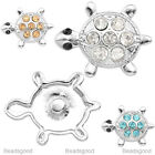 1x Alloy Crystal Turtle Tortoise Bead Charms Snap Button For Bracelet DIY
