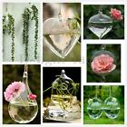 Hanging Glass Flower Plant Vase Hydroponic Container Pot Home Wedding Decoration