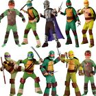 Official Boys TEENAGE MUTANT NINJA TURTLES Fancy Dress Costume TMNT Book Week