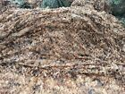 2PCS 5MX3M Hunting Camping Camo Military Camouflage Army Jungle Leaves Net