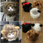Lovly Small Pet Costume Cosplay Lion Mane Wig Hat For Cat Or Small Dog