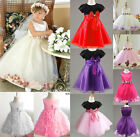 Girl Children Wedding Party Pageant Prom Ball Tulle Flower Princess Dress Formal