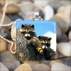 """RACCOON FRIENDS"" BEST FRIENDS BFF RACCOONS GLASS PENDANT CHARM NECKLACE KEYRING"