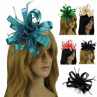 Ladies Women's Elegant Fascinator Hair Clip Feather Mesh Wedding Horse Races Hat