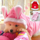 Cute Pet Dog Cat Bunny Clothes Clothes Winter Warm Puppy Lovely Costume Apparel