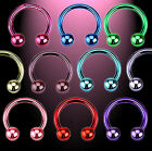 Neon Titanium anodized Horseshoe 0 59/1250x0 3/10in 10 er SET Or Single 10