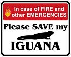 In Case of Fire Save My Iguana Decals / Stickers