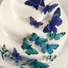 Beautiful Butterfly Hand Painted Feather Cake Sets   Wedding Party Favors