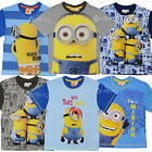 Boys Girls Official Despicable Me Minions Cotton T Shirt Top Ages 2-8 Years