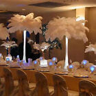 white wedding centerpieces - New Wholesale 10 PCS Natural Ostrich Feathers For Wedding Prom Centerpiece
