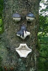GARDEN TREE FACE NOVELTY GARDEN ORNAMENT DECORATION FUNNY FACE FENCE SHED TF100