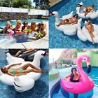 White Rideable Swan Flamingos Inflatable Float Raft Drink Holder Swim Pool Toy