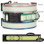 Dog Collar Glow in the Dark & Reflective Nylon Pet Collars Night visibility