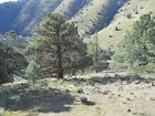 45 Acres, Yreka, Great View, Hwy 99 Frontage, Shasta River, Real Pics, Dont Miss
