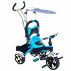 Lil' Rider Convertible 4-in-1 Stroller Tricycle First A Stroller Then Tricycle