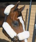 Equine Comfort Halter Fleece Set- ,9 piece available