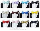 Boys Children Kids  Wedding Party Tuxedo Bow Tie Adjustable Pre-Tied Bow Ties