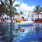 Inflatable Unicorn Ride on Floats + Holder Beer Beverage Can Cup Pool Party