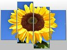 LARGE GIANT SUNFLOWER FLORAL LARGE SPLIT PANEL 4 PANEL CANVAS WALL ART IMAGE