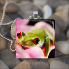 """FROG CUTIE"" FROG GLASS TILE PENDANT NECKLACE KEYCHAIN"
