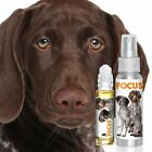 GERMAN SHORTHAIRED POINTER FOCUS DOG AROMATHERAPY FOR CANINE CONCENTRATION