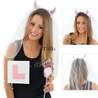 Hen Night Veil, Wand & L Plate Bride to Be Set Pink - Hen Party Accessories TXWD