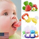 US Baby Feeding Pacifier Fresh Food Fruits Feeder Dummy Soother Weaning Nipple