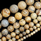 4mm 6mm 8mm 10mm 12mm Natural Yellow Picture Jasper Gemstone Round Beads 15.5""