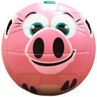 Molten MS500 Pig Volleyball