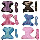 Dog Pet Walking Collar Safety Lead/Leashes Puppy Harness Printed Vest Clothes US