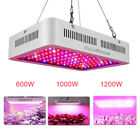 1200W 1000W 600W LED Grow Light Panel Lamp for Indoor Greenhouse Plant ColoFocus