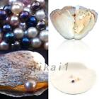 1/5/10PCS Individually Wrapped Oysters with Large Pearl 7.5-8MM Birthday Wedding