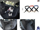Dog Hammock Back Seat Cover  Seat Belt Clip Tether  Reflective Mesh Harness