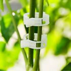 US 100Pcs Garden Tomato Clips Trellis Vegetable Binder Twine Plant Support 23mm